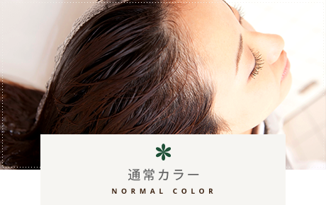 通常カラー NORMAL COLOR