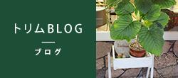 トリムBLOG - ブログ